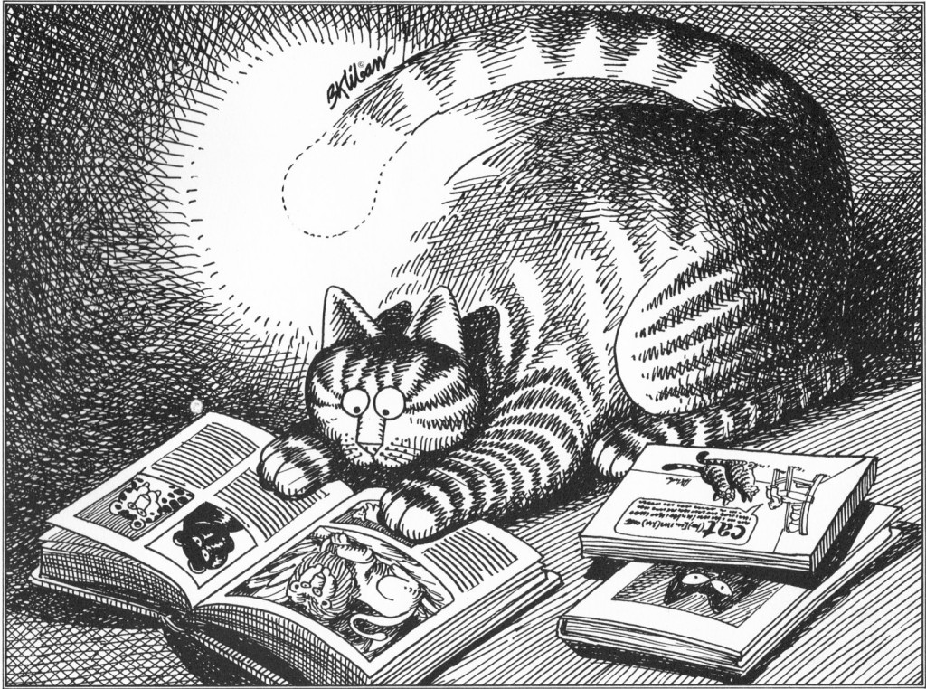 illustration of a cat reading a book